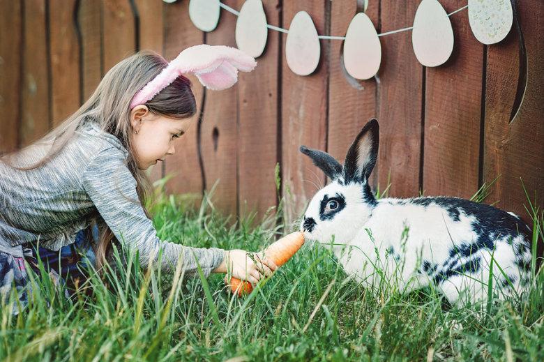 Uskrsni zec nosi igračke i obojana jaja. Zašto? Kako?